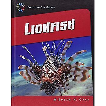 Drakfisk (21st Century färdigheter bibliotek: att utforska våra hav)