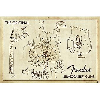 Poster - Fender - Diagram Wall Art Licensed Gifts Toys 24959