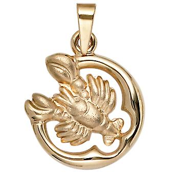 Ladies pendant zodiac cancer 375 gold yellow gold matt zodiac pendant