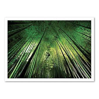 Art-Poster - Bambu natt - Takeshi Marumoto