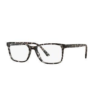 Prada VPR14W VH31O1 Matta harmaa kilpikonna lasit