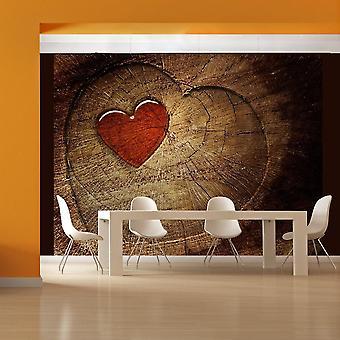 Tapet - Evig kærlighed