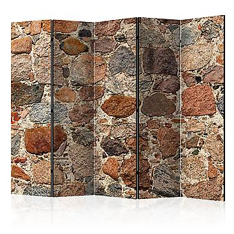 5-teiliges Paravent - Stony Artistry II [Room Dividers]