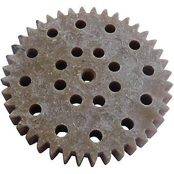 Reely Zahnrad-Holz, Kunststoff-Modul-Typ: 1.0 Nr. Zähne: 40 1 PC