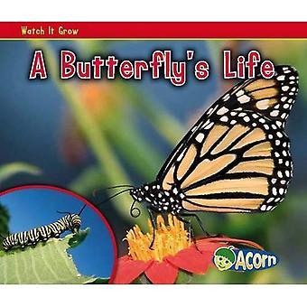 A Butterfly's Life (Watch It Grow)