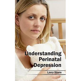 Understanding Perinatal Depression by Stone & Larry