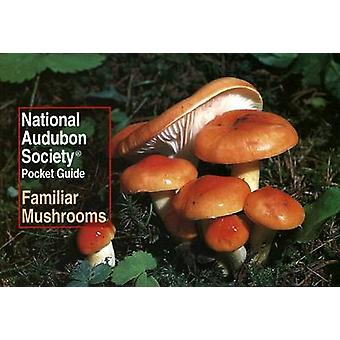 Pocket Guide to Familiar Mushrooms of North Americ by Katsaros - 9780