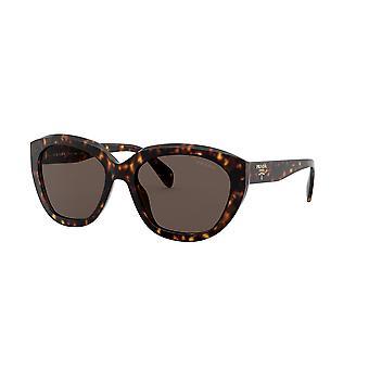 Prada SPR16X 2AU8C1 Havana/Dark Brown Sunglasses