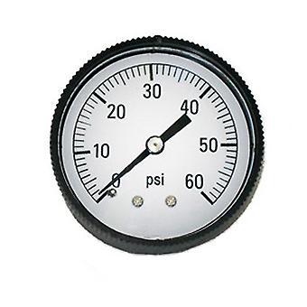 "Jed Pool 80-847-B 0.25"" Back Mount Pressure Gauge"