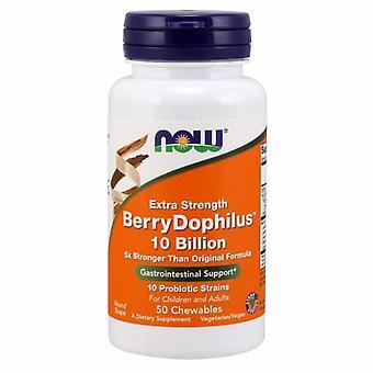 Now Foods Berry Dophilus 10 Billion, 50 Chews
