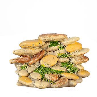 Nuket Talon kerma kivi kasa miniatyyri puutarha maisemointi lisävaruste