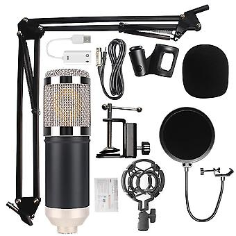 800 Studio Professional Microphone