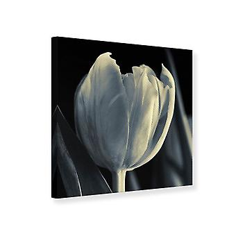 Lona impresión XXL Tulip en monocromo