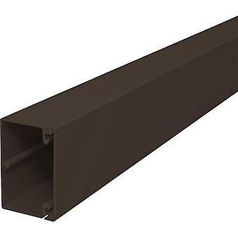 OBO Bettermann 6189598 Cable duct (L x W x H) 2000 x 60 x 40 mm 1 pc(s) Brown