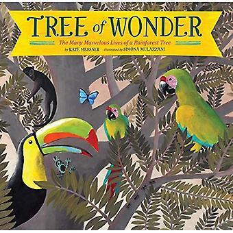 Baum des Staunens: die vielen wunderbaren Leben eines Regenwald-Baumes