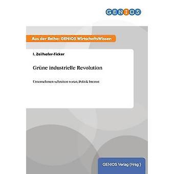 Grne industrielle Revolutionunternehmen schreiten voran Politik bremst von ZeilhoferFicker & I.