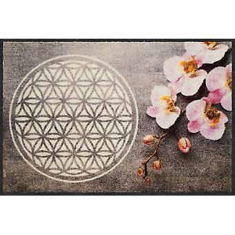 Salon lion flower of life 50 x 75 cm mat washable dirt mat