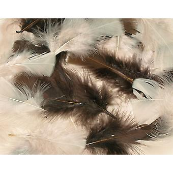 25g Assorted Natural Feathers for Crafts