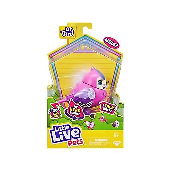 Little Live Pets Candi Sweet Lil Bird