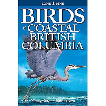 Fåglar i Kustnära British Columbia