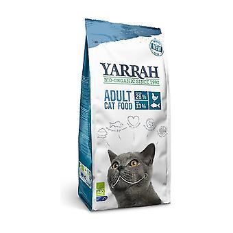 الأسماك القط الغذاء 2،4 كجم