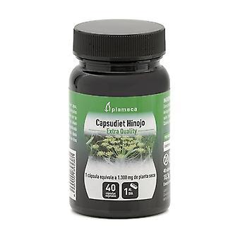 Capsudiet Fennel 40 capsules