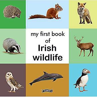 My First Book of Irish Wildlife [Board book]