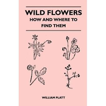 Wild Flowers  How and Where to Find Them by Platt & William