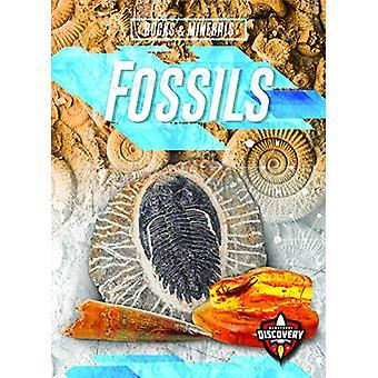 Fossils by Patrick Perish - 9781644870730 Book