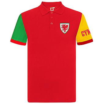 Pays de Galles Cymru FAW Officiel Football Gift Boys Kids Contrast Sleeve Polo Shirt