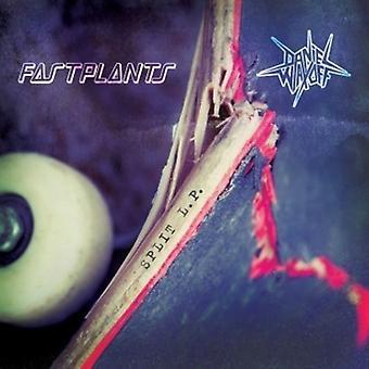 Fastplants / Waxoff, Daniel - Split [Vinyl] USA import