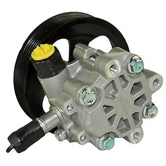 Servolenkungspumpe für Discovery Mk3, Range Rover Mk3, Ls, 4.0, 4.4, 4.2 Qvb500390, lr006329