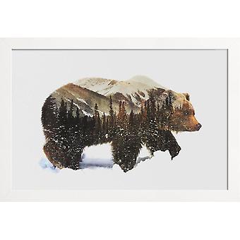 JUNIQE Print - Artic Grizzly Bear - Niedźwiedź Plakat w brązowy & biały