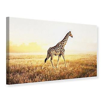 Leinwand drucken die Giraffe