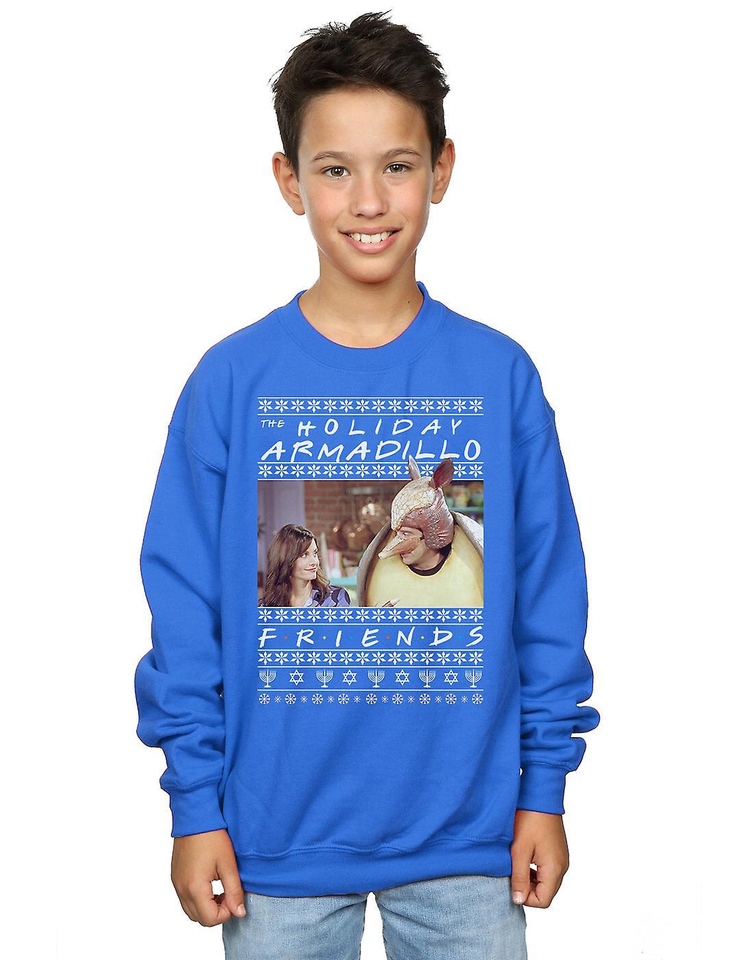 Friends Boys Fair Isle Holiday Armadillo Sweatshirt