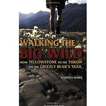 Går det stora vilt: från Yellowstone till Yukon på Grizzly Bear's Trail