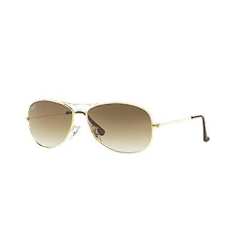 Ray-Ban Cockpit RB3362 001/51 Gold Arista/Crystal Brown Gradient Sunglasses