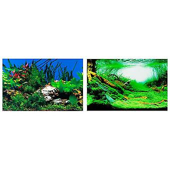 Ferplast Aquarium background Blu9053 (Fish , Decoration , Backgrounds)