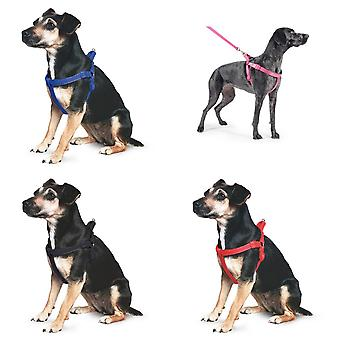 Ancol Pet Products Padded Dog Exercise Harness