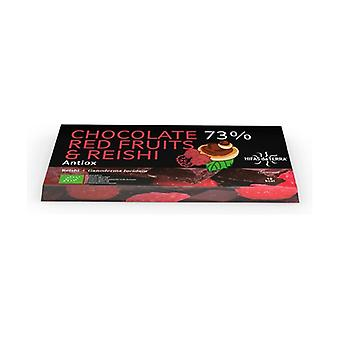 Chocolate 73% Red and Reishi Fruits 100 g