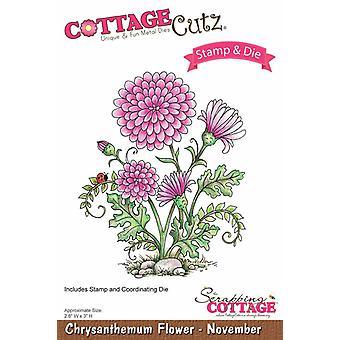 RomutusmökkiCutz Chrysanthemum Flower - marraskuu