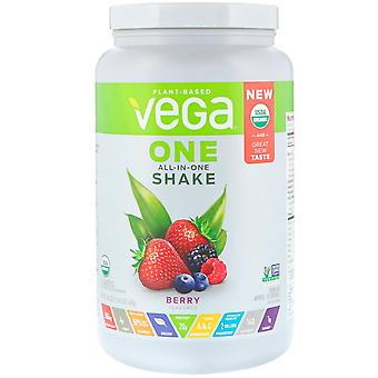 Vega, One, All-In-One Shake, Berry, 1.51 lbs (688 g)
