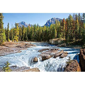Castorland Athabasca River, Jasper National Park, Canada Jigsaw Puzzle (1500 Pieces)