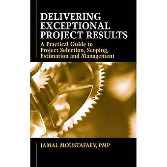 Delivering Exceptional Project Results - A Practical Guide to Project