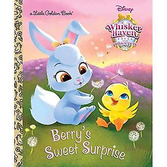 Berrys godsak (Disney Slottsdjuren: Whisker Haven Tales) (liten gyllene bok)