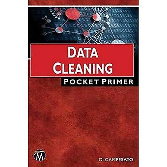 Data Cleaning: Pocket Primer (Computer Science)