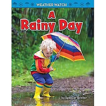 Un jour de pluie (veille météorologique)