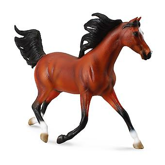 CollectA 1: 12 Arabian Stallion ? Bright Bay