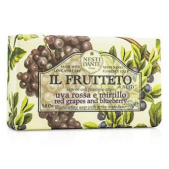 Nesti Dante Il Frutteto illuminando Soap - uve rosse & mirtillo - 250g / 8.8 oz