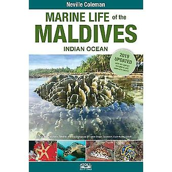 Marine Life of the Maldives - Indian Ocean by Neville Coleman - 97818